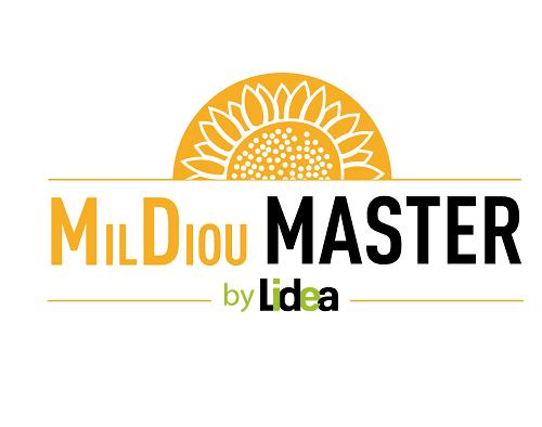Mildiou MASTER : la réponse génétique de LIDEA pour une lutte durable contre le mildi